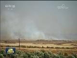 [视频]叙利亚军方在多地军事行动取得进展