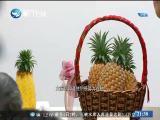 两岸新新闻 2018.7.4 - 厦门卫视 00:28:38