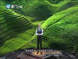 民国大师们的茶事 两岸秘密档案 2018.7.17 - 厦门卫视 00:41:19