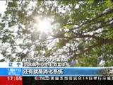 """[新闻直播间]新闻提示 三伏贴""""冬病夏治""""不可盲目跟风"""
