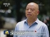 """[视频]台风""""安比""""在上海登陆"""