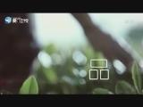 奇幻博物馆·晋江寻宝 闽南通 2018.06.30 - 厦门卫视 00:24:59