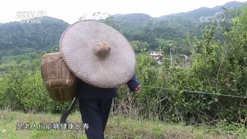 分水村的长寿秘诀 中华医药 2018.09.15 - 中央电视台 00:08:35