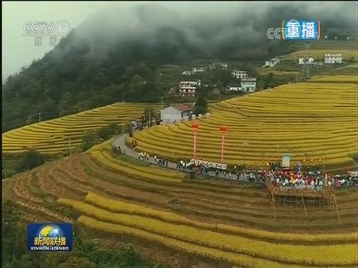 """[视频]丰年庆佳节 亿万农民喜迎""""中国农民丰收节"""""""