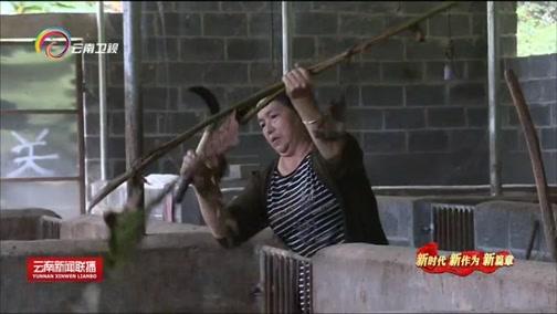 """[云南新闻联播]""""小喇叭""""唱响边疆好声音 助推脱贫攻坚"""