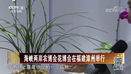 [海峡两岸]海峡两岸农博会花博会在福建漳州举行