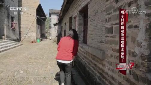 有个村庄用动物治理排水系统 是真的吗? 是真的吗 2018.11.24 - 中央电视台 00:08:33