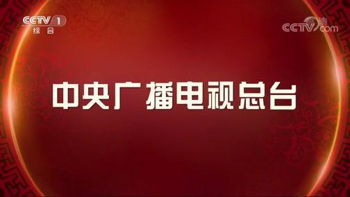 《2019中央广播电视总台春节联欢晚会》 20190204 4/4