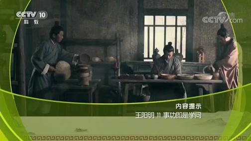 王阳明 11 事功即是学问 百家讲坛  2019.03.02 - 中央电视台 00:38:21