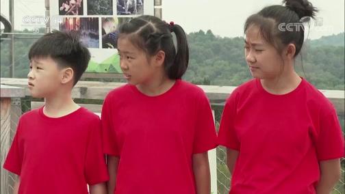 《芝麻开门》 20190311 挑战大现场 绿色王国大挑战