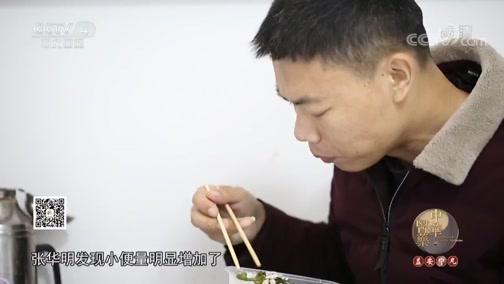 茯苓利水渗湿 健脾宁心 中华医药 2019.03.16 - 中央电视台 00:05:24