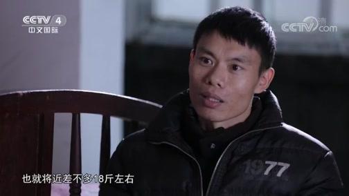 """《中华医药》 20190316 """"隐身""""的肾病"""