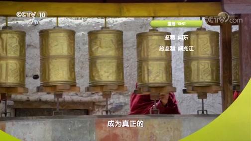 《真相》 20190403 原始求生记(11)