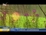 炫彩生活(房产财经版)2019.04.15 - 厦门电视台 00:12:34