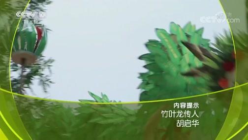 《人物》 20190426 竹叶龙传人 胡启华