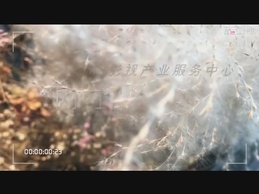 【微拍厦门】网红的一日 00:01:17