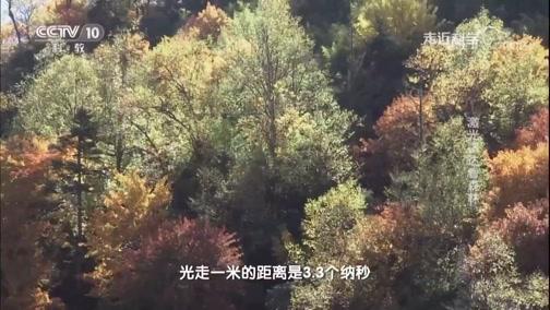 《走近科学》 20190528 激光雷达看森林
