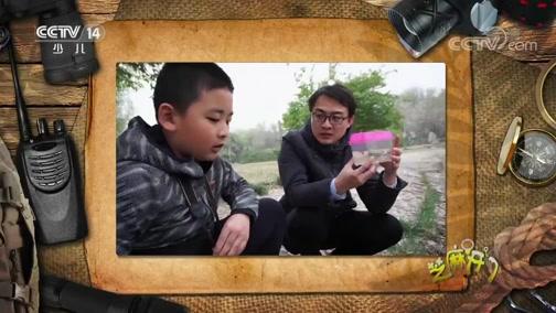 [芝麻开门]揭晓天津水上公园原生淡水鱼的奥秘