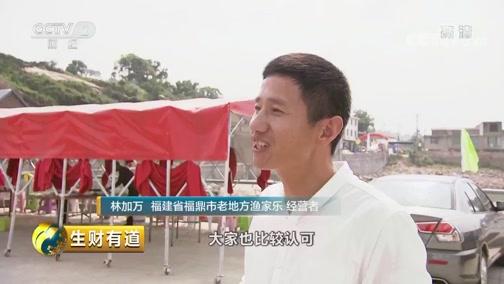 《生财有道》 20190710 夏日经济系列 福建福鼎:美不胜收海边游