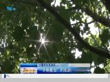 午间新闻广场 2019.07.24 - 厦门电视台 00:21:24