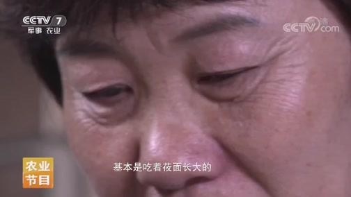 《家乡菜 中国味》 20190727 武川味道