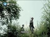"""中国""""第一军"""" 两岸秘密档案 2019.07.29 - 厦门卫视 00:41:21"""