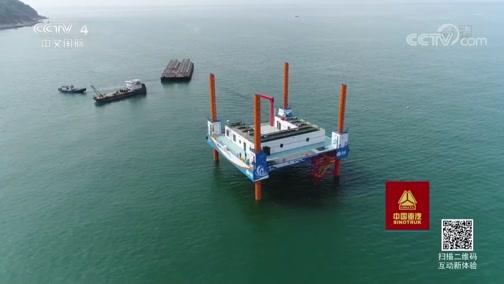 《走遍中国》 20190805 3集系列片《海洋卫士》(1)海岛来客