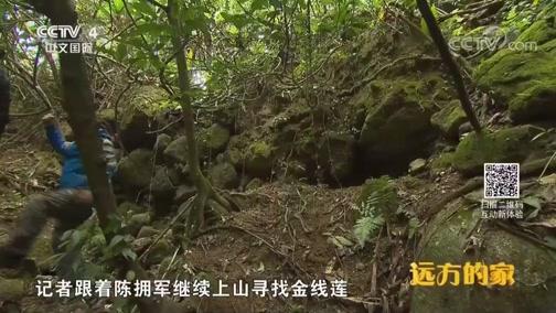 [远方的家]系列节目《大好河山》——秘境之踪 大容山:容山 容水 容自然