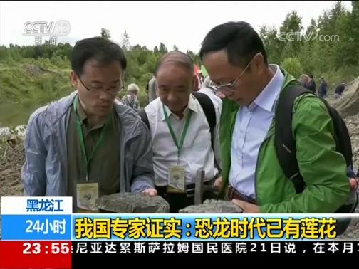 [24小时]黑龙江 我国专家证实:恐龙时代已有莲花