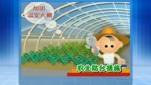 农业防台小知识 00:00:40