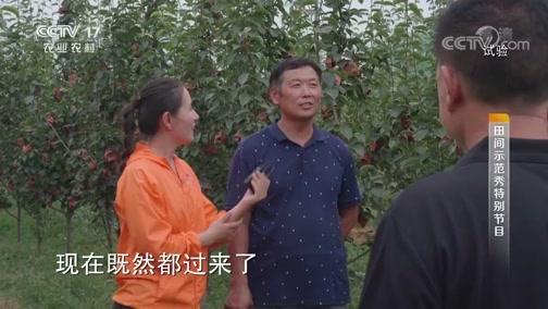 《田间示范秀》 20190905 不寻常的梨树园