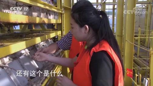 《科技链》 20190905 鲍鱼新生
