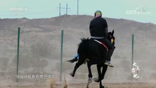 [中华民族]蒙古男儿的汗水浇灌着马鬃山一年中最热闹的日子