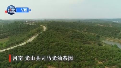 习近平在光山县深入油茶园和农村考察调研 00:00:58