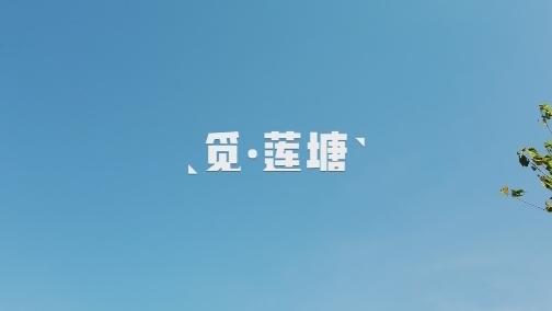 【微拍KY棋牌网址】觅·莲塘 00:00:59