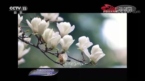 《中国音乐电视》 20191007