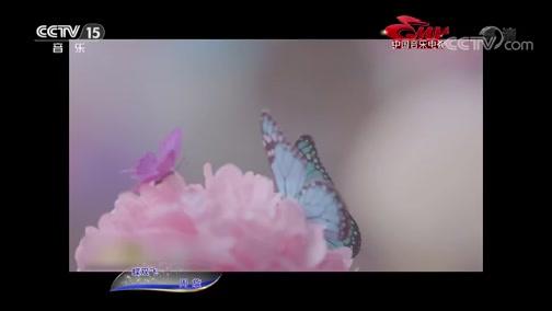 [中国音乐电视]歌曲《蝶双飞》 演唱:周旋