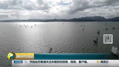 [国际财经报道]云南昆明:滇池迎来开湖季 银鱼鲜虾齐上岸