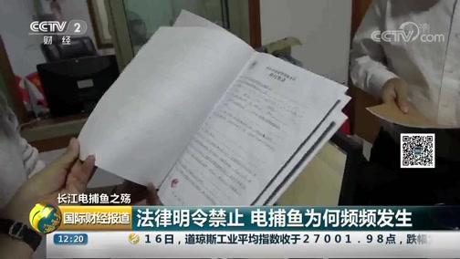 [国际财经报道]长江电捕鱼之殇 法律明令禁止 电捕鱼为何频频发生?