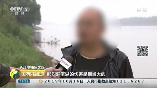 [国际财经报道]长江电捕鱼之殇 电捕鱼:生态与生命的双重危机
