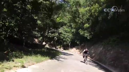 [自行车]2019海沧自行车爬坡挑战赛