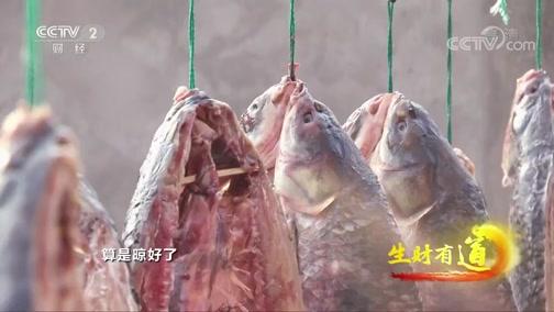 《生财有道》 20200224 浙江德清:水美鱼肥财富多