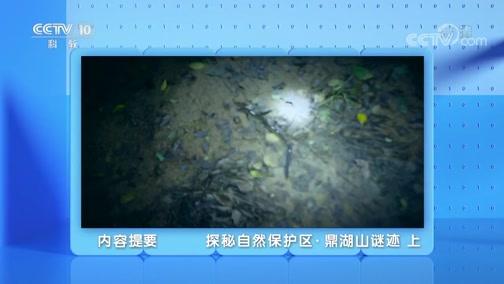 《地理·中国》 20200228 探秘自然保护区·鼎湖山谜迹 上