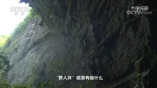 《地理·中国》 20200305 井底乾坤·竖井里的秘密