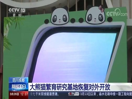 [期货配资 30分]四川成都 大熊猫繁育研究基地恢复对外开放央视网2020年03月26日 12:13
