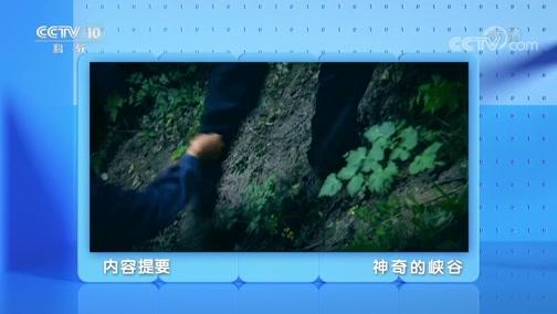 《地理·中国》 20200414 神奇的峡谷