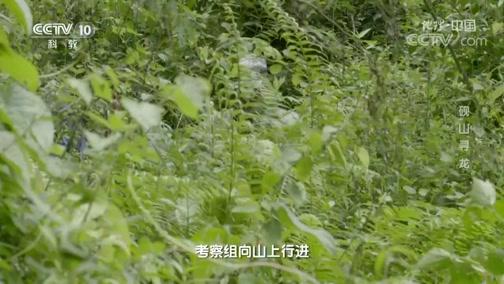 """《地理·中国》 20200522 砚山寻""""龙"""""""