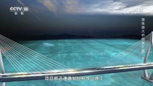 《读书》 20200602 曾平标 《中国桥:港珠澳大桥圆梦之路》 港珠澳大桥圆梦之路 下