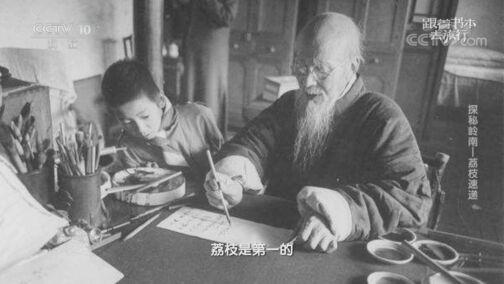 《跟着书本去旅行》 20200819 探秘岭南——荔枝速递