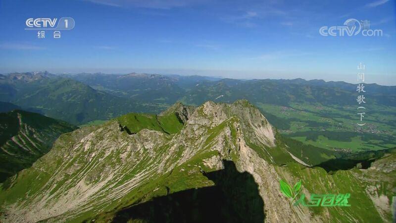 《人与自然》 20200906 山间牧歌(下)